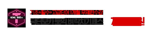 닥터보카 토익 벼락치기패스(30일):78,000원